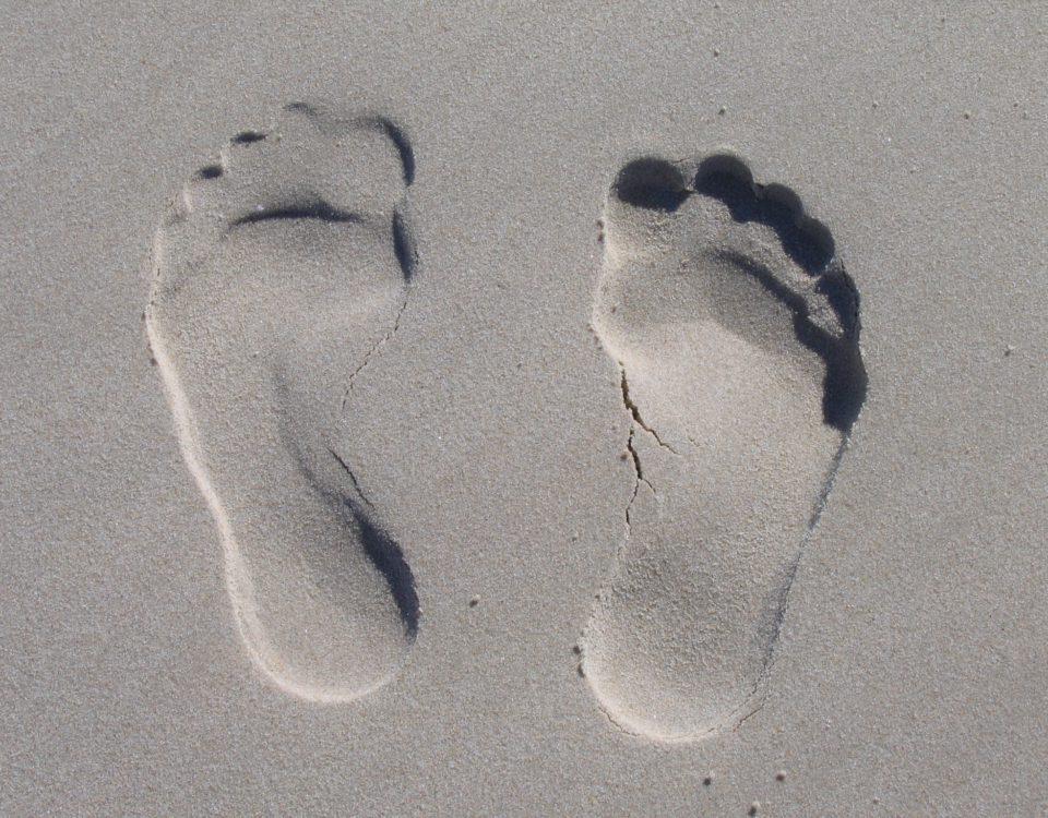 sandfeets